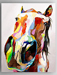 Oil Painting Cow Head Hand Painted Canvas with Stretched Framed Ready to Hang