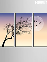 E-HOME® Stretched Canvas Art The Moon And The Tree Decoration Painting Set of 3