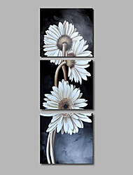 Ready to Hang Hand-Painted Oil Painting on Canvas Wall Art Contempory Abstract Flowers White Daisies Three Panels