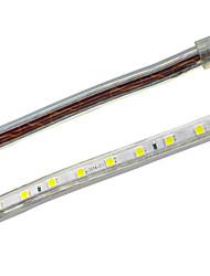 Jiawen Waterproof 39W 2400LM 120x5050 SMD LED Flexible Light Strip (3M-Length / 220V)