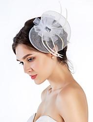 Elegant Net With Feather Women's Fascinators