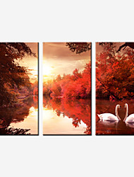 Romantic Canvas Print Three Panels Stretched Canvas Painting