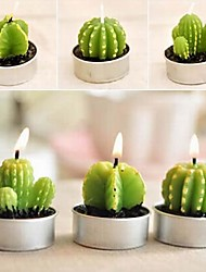 6 X Cactus Plant Pot Set Candles Candle Party Christmas Wedding Decorations (Random Color)
