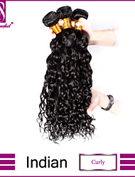 Indian  Curly Virgin Hair 3pcs/lot Unprocessed Indian Virgin Hair Curly Weave