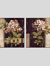 Ölgemälde Blume Stil, Canvas-Material mit gestreckten Rahmen bereit, hängen Größe: 70 * 70 * 2 Stück.