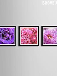 E-HOME® Framed Canvas Art,Showy Flowers Framed Canvas Print Set Of 3