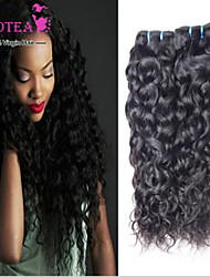Brazilian Virgin Hair Water Wave Brazilian Hair Weave Bundles Wet And Wavy Virgin Hair 3Pcs Lot Human Hair Extensions