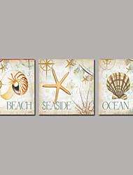 Vida Imóvel Impressão em tela 3 Painéis Pronto para pendurar , Quadrada