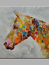 Single Modern Abstract Pure Hand Draw Ready To Hang Decorative The Horse Oil Painting