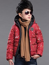Boy's Polyester Down & Cotton Padded Coat , Winter Long Sleeve/Hat/Zipper