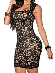 Women's Black/Blue/Pink Sexy Dress, Lace Bodycon