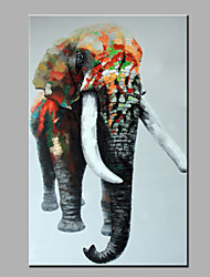 одного современного абстрактного чистого ничья рука готовы повесить декоративную картину маслом слон