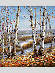 Oil Painting Modern Landscape  Canvas Material with Stretched Frame Ready To Hang Size 70*70*1PCS