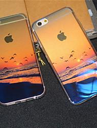 praia à beira-mar do nascer do sol da gaivota semitransparente brilho da tampa do caso de volta suave para 6s iphone plus / iPhone 6 Plus