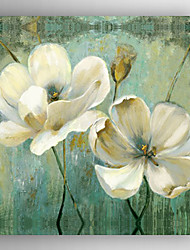 Oil Painting White Flowers Hand Painted Canvas with Stretched Framed