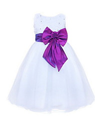 Girl's Blue / Green / Pink / Purple / Red Dress,Lace / Bow Polyester Summer / Spring / Fall
