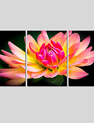 Canvas Print Art Set Of 5 Wall Pictures For Linving Room Modern Wall Painting Flower Pictures Home Decor