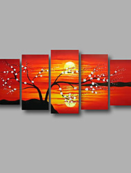 "Stretched (ready to hang) Hand-painted Oil Painting 60""x28"" Canvas Wall Art Modern Flowers Sunrise Blossom"