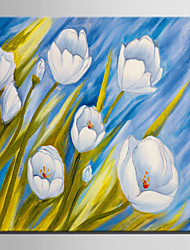 Mini pintura al óleo de tamaño de correo casa flores blancas modernas mano pura dibujan pintura decorativa sin marco