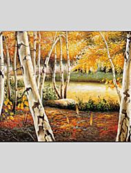 Landschaft Leinwand Material Ölgemälde mit gestreckten Rahmen bereit Größe zu hängen 90 * 60cm