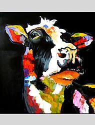 Peint à la main AnimalModern / Classique / Traditionnel / Réalisme / Pastoral / Style européen Un Panneau ToilePeinture à l'huile
