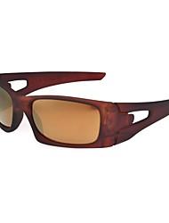 óculos de desporto clássico óculos de sol escuros marrom quadro completo