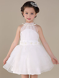 A-line Short / Mini Flower Girl Dress - Cotton / Organza / Satin Sleeveless Jewel with