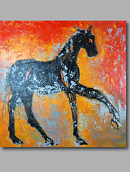 "Stretched (ready to hang) Hand-Painted Oil Painting 24""x24"" Canvas Wall Art Modern Animals Horses Abstract"