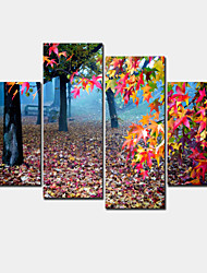 Modern Canvas Print Four Panels Ready to Hang,Horizontal