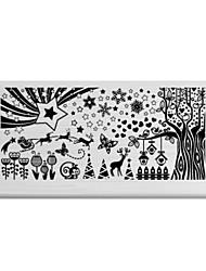 BlueZOO Rectangle Printing Nail Art Stamping (C-025)