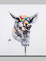grande pintura a óleo abstrata moderna porco mão animais canvas, com quadro esticado pronto para pendurar pintada