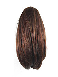 Length Red Wine Wig 26CM Synthetic Straight High Temperature Wire Gripper Small Ponytail Color 3017