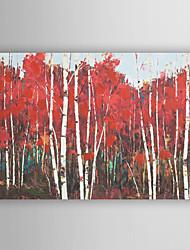 ручная роспись маслом пейзаж абстрактный сарай с растянутыми кадр 7 стены arts®