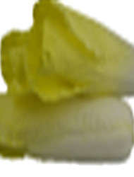 Simulated Yellow Long Cabbage