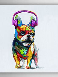 Hand Painted Oil Painting Animal Dogs with Purple Headset with Stretched Frame 7 Wall Arts®