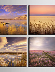 E-HOME® Stretched Canvas Art The Setting Sun Decoration Painting  Set of 4