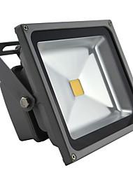 30W Focos de LED 2700-3000 lm Branco Quente / Branco Frio COB AC 85-265 V 1 Pças.
