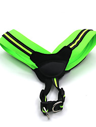 Cat / Dog Collar / Harness / Slip Lead Reflective / Adjustable/Retractable / Safety / Soft / Strap / Padded Green / RosePolypropylene
