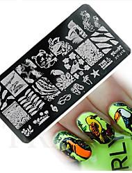 Nagel-Kunst-Platte Stamper Scraper 12*6