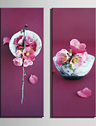 E-HOME® Stretched Canvas Art Red Peach On The Bowl Decoration Painting  Set Of 2