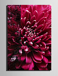 E-HOME® Stretched Canvas Art Red Flowers Decoration Painting  One Pcs