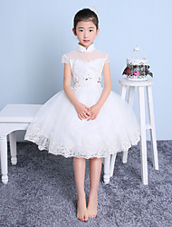 Ball Gown Knee-length Flower Girl Dress - Tulle Short Sleeve High Neck with Lace