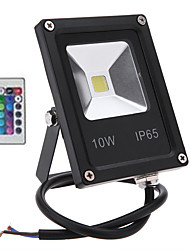 HRY® 10W RGB Color Changing Waterproof Security Lights with Remote Control for Garden Scenic Spot Hotel(AC85-265V)