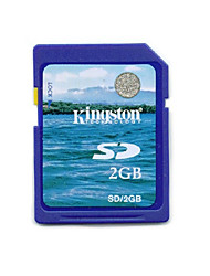 2gb kingston scheda di memoria SD