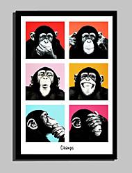 Animal Quadros Emoldurados / Conjunto Emoldurado Wall Art,PVC Preto Cartolina de Passepartout Incluída com frame Wall Art