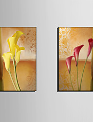 E-HOME® Stretched Canvas Art Flower Decoration Painting  Set of 2