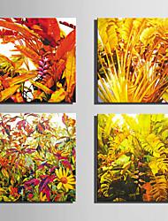 E-HOME® Stretched Canvas Art Large Leaf Plants Decoration Painting  Set of 4