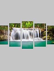 Фотографические отпечатки Наборы холстов Холст для печати Пейзаж Фото Реализм Путешествия Отдых ботанический 5 панелей Горизонтальная С