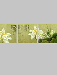 VISUAL STAR®3 panel Chinese Painting Water Lily Flower Canvas Wall Art for Dining Room Decor Ready to Hang