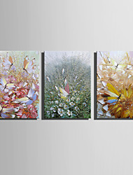E-HOME® Stretched Canvas Art Flowers And Butterflies Abstract Painting Decoration Painting  Set of 3